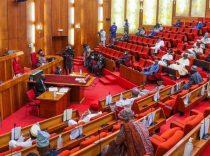 senate-reject-armed-forces-establishment